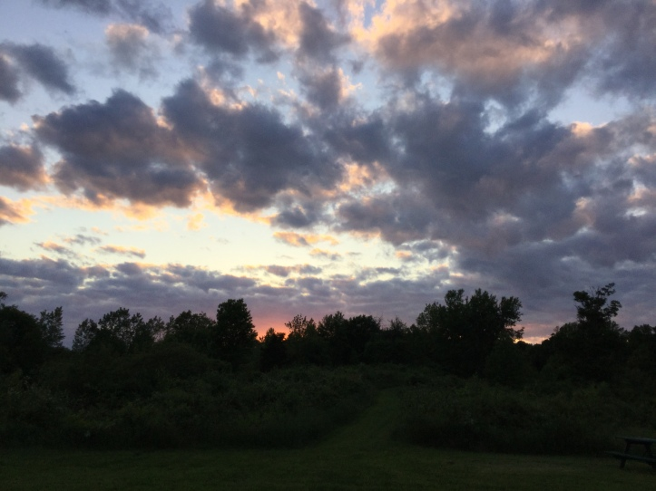Speers photo of sunset over woods and field